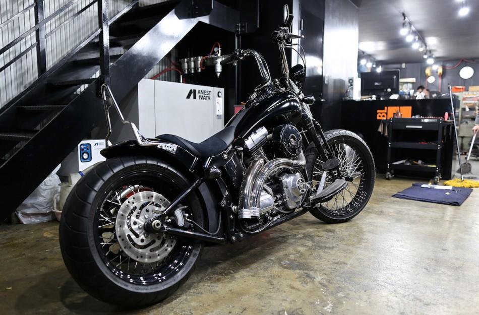 Springer custom2